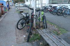 Molti ragazzi legano le biciclette ad alberi o ad altro