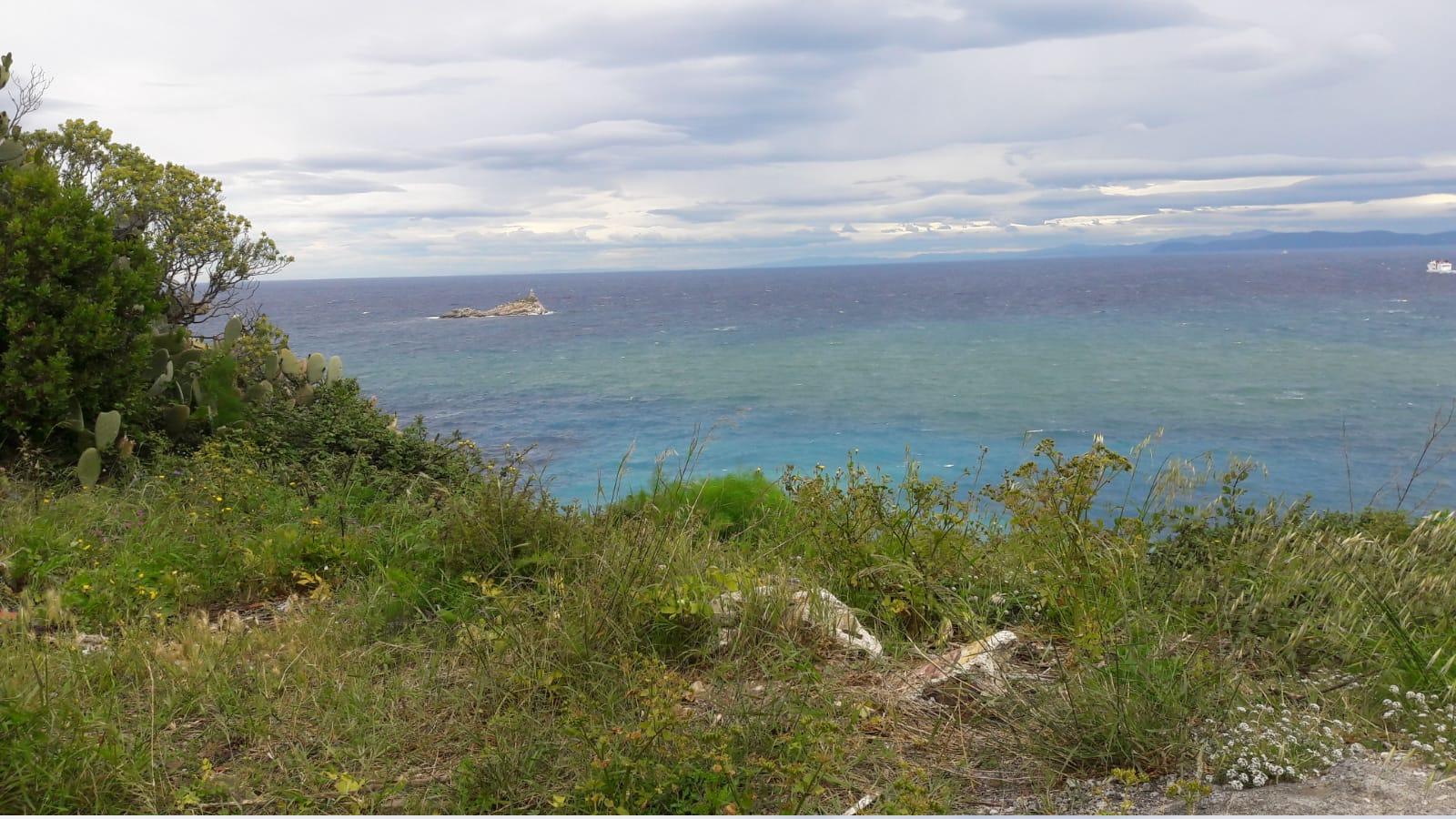 Il mare dal giardino della villa napoleonica