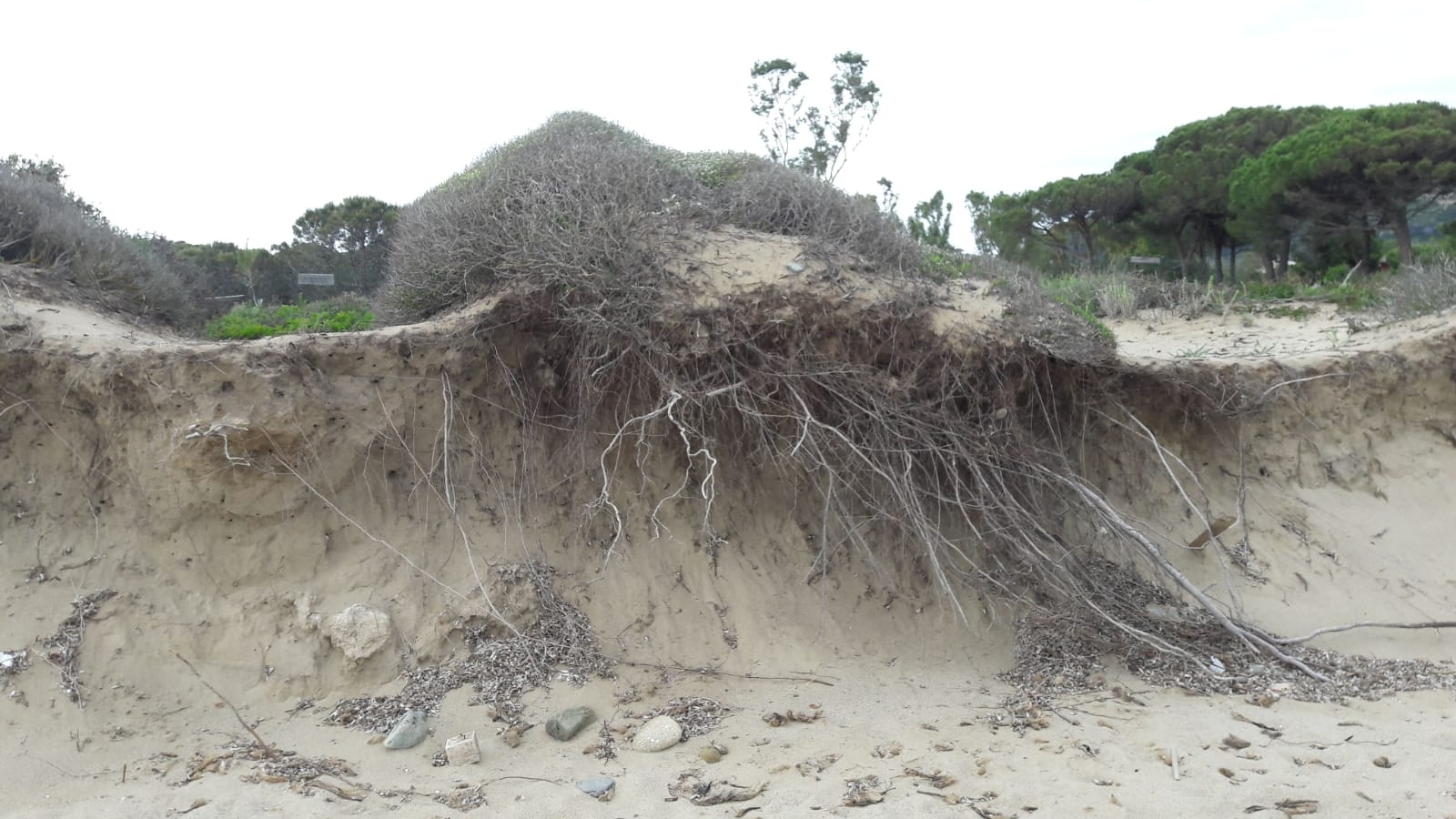 Erosione della spiaggia